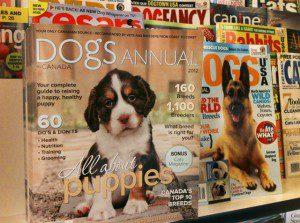 Dogs in Canada Annual cover