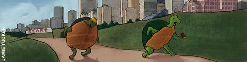 Illustration of two tortoises