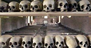 Skulls on shelves