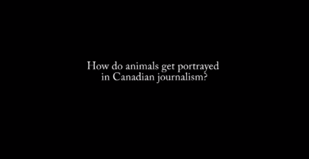 """How do animals get portrayed in Canadian journalism?"""