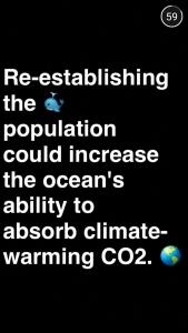 A screenshot of a Global News snap
