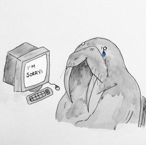 """Walrus at computer that says """"I'm sorry"""""""