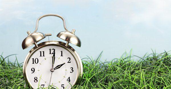 Alarm clock in grass