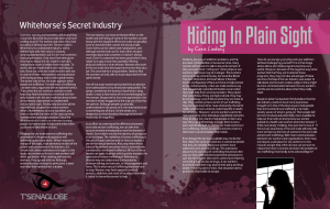 Hiding in Plain Sight by Casis Lindsey: Whitehorse's Secret Industry