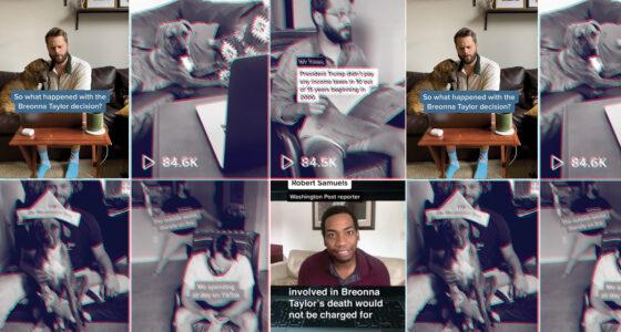 Collage of TikTok videos